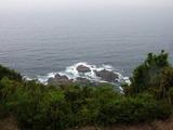 このあたりが潮吹岩です!
