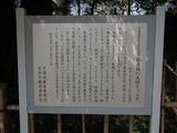 佐倉城址公園 夫婦モッコクの説明