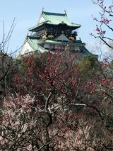 大阪城と大阪城梅林