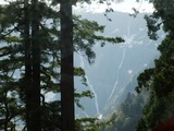 名滝(左)とハンノキ滝(右)