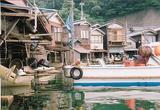 伊根湾の舟屋�
