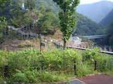 道の駅 しもべ 吊り橋と展望台
