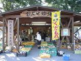 地元農家の直売所