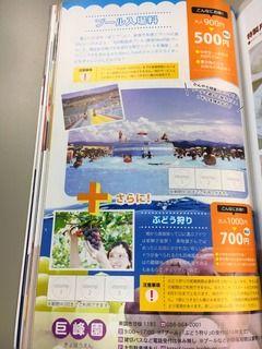 IMG_1455-e8bb8-thumbnail2