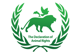 the-rights-of-animals
