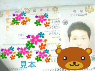 パスポート 申請 松山市