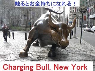 charging-bull-nyc