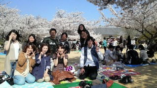 Hanami Party at Matsuyama Castle