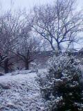 HIDEの家雪