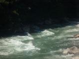渡良瀬川�