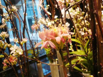 季節のお花も綺麗!