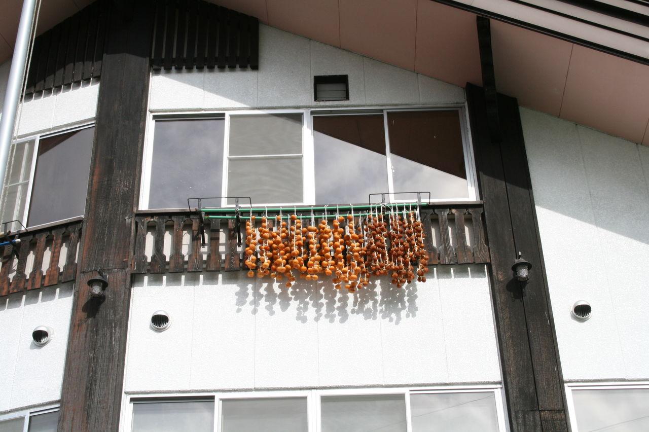 2011柿 002