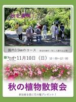 11.秋の植物散策会