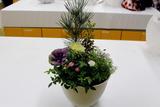 新春を彩る園芸教室