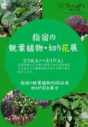 指宿の花き観葉植物展