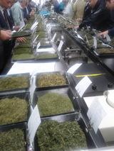 茶市場風景2