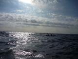 12朝日を浴びて漕ぎ進む