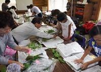11.植物標本作り講習会