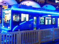 花園イルミネーション電車
