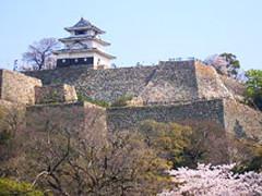 ランキング丸亀城