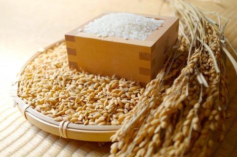【修羅場】実家は元農家で母が毎月お米をくれます。海外赴任中の弟家にもあげてますが、弟嫁がそのお米を売っているようです。年間27万円分...