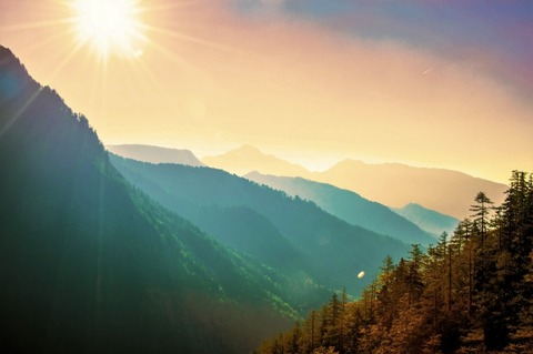 【閲覧注意】あの恐怖は忘れられない。まだ6歳の頃、山で遭遇した...