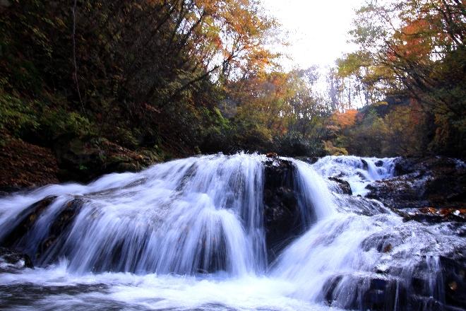 魚止めの滝4