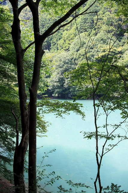 白丸湖畔1