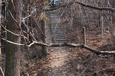 宝登山より下り坂1