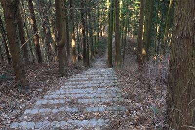 宝登山より下り坂2