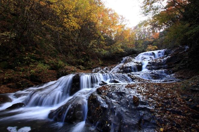 魚止めの滝2