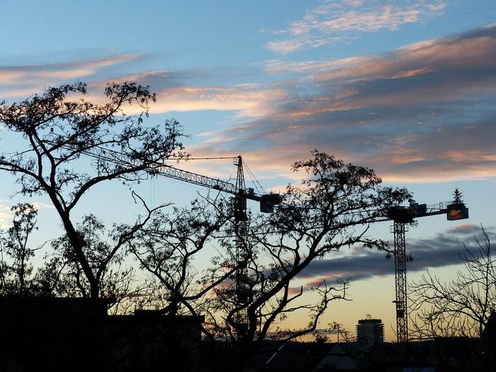crane-270801_1280