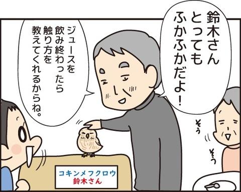 20180603ふくろうカフェ5