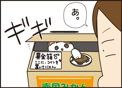 20180316猫の貯金箱4