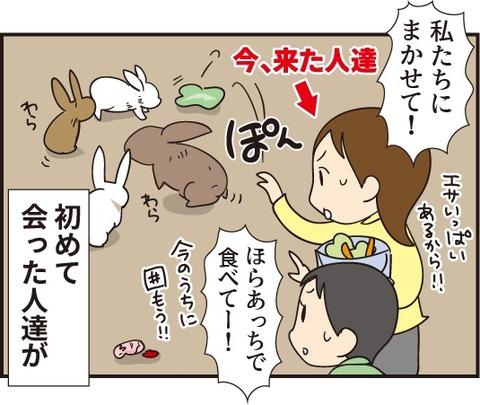 20190310うさぎの赤ちゃん5