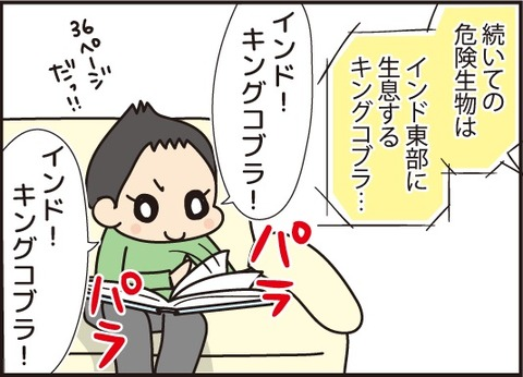 20171011大好き危険生物2