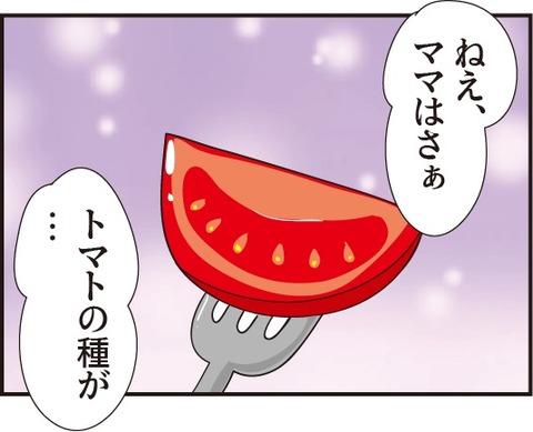20190326トマトの種3