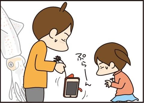 20170615いかのおかげ5