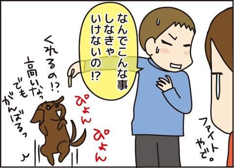 20161121犬嫌い4