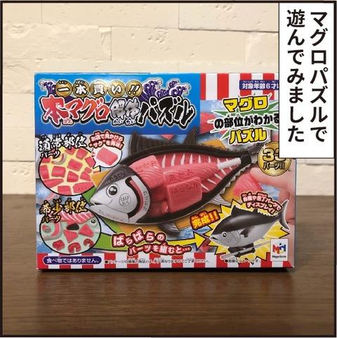 20200705魚パズル1