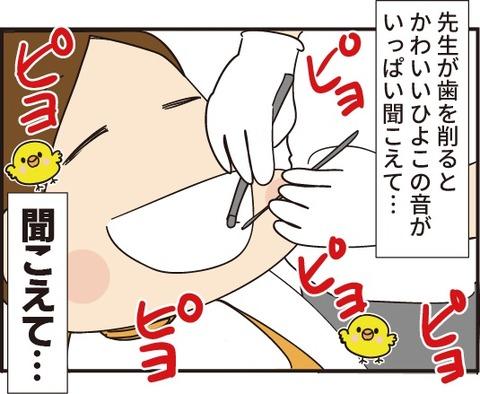 20190816歯医者さんひよこ3