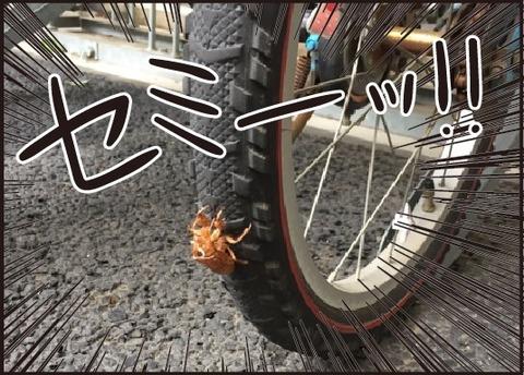 20170913自転車大好き5