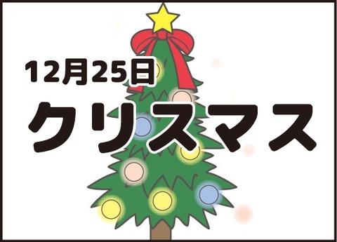 20180119クリスマス10