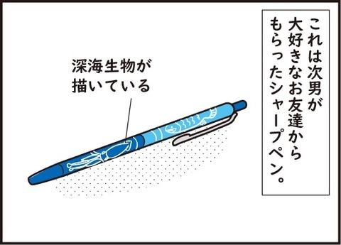 20181012大事なシャープペン1