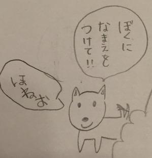 IMG_8439_2