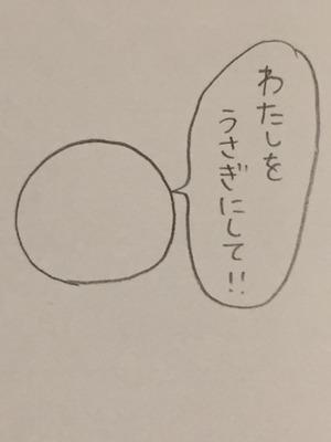 IMG_8434