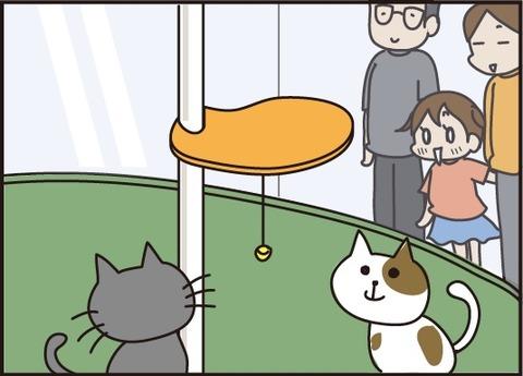 20170804猫カフェ1