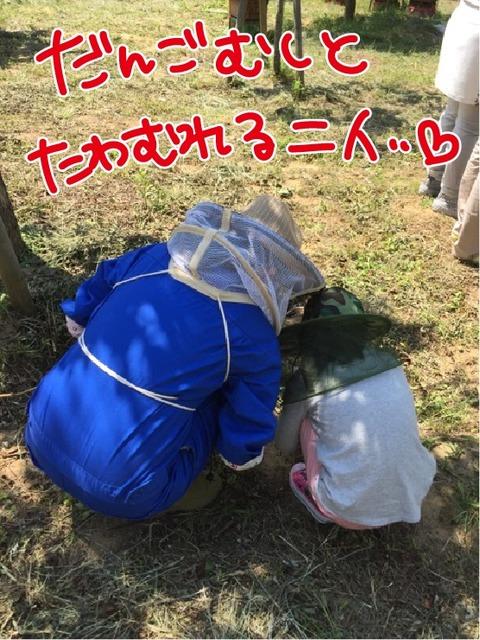 20170719養蜂体験9