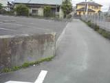 07b9012f.jpg