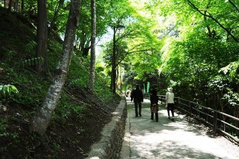 高尾山登山道 1号路